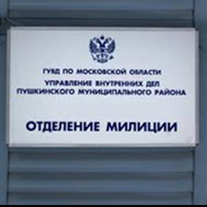 Отделения полиции Теньгушево